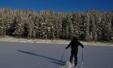 Back country skiing along the Russian border
